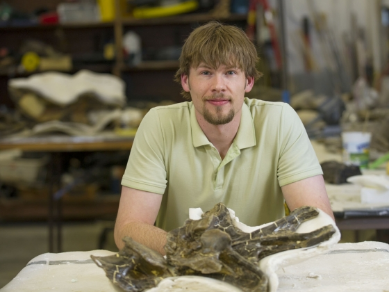 msu paleontologist finds that ligaments in some dinosaurs necks