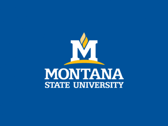 MSU 2019 spring graduates listed by hometown
