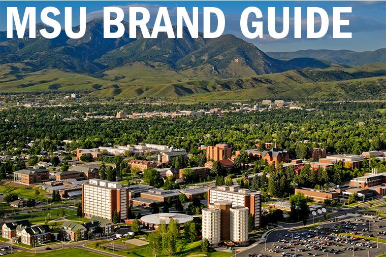 MSU Brand Guide
