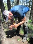 Nate Bowersock collects bear hair from a snare site, which will be used to estimate population size - June 2017