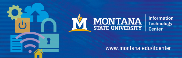 MSU Information Technology Center header