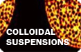 Colloidal Suspensions