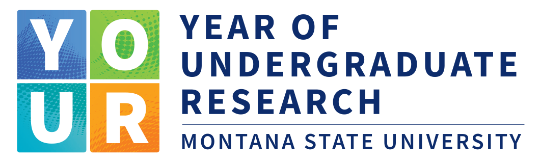Year of Undergraduate Research logo