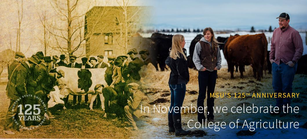 In November, we celebrate the College of Agriculture