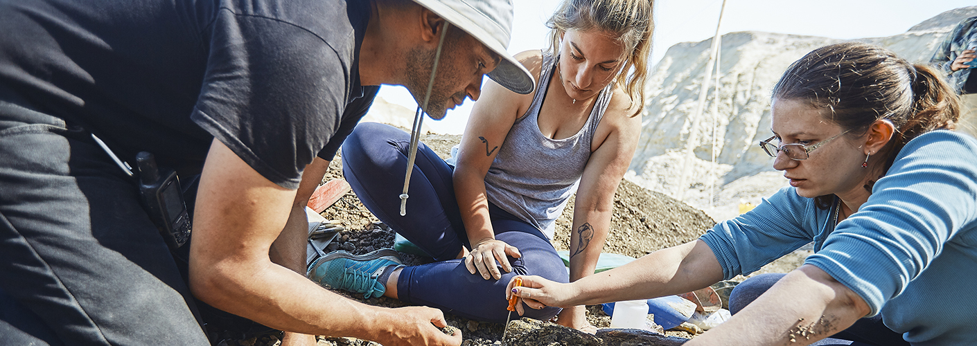 A man and two women carefully examine a fossil in the ground at a dig.