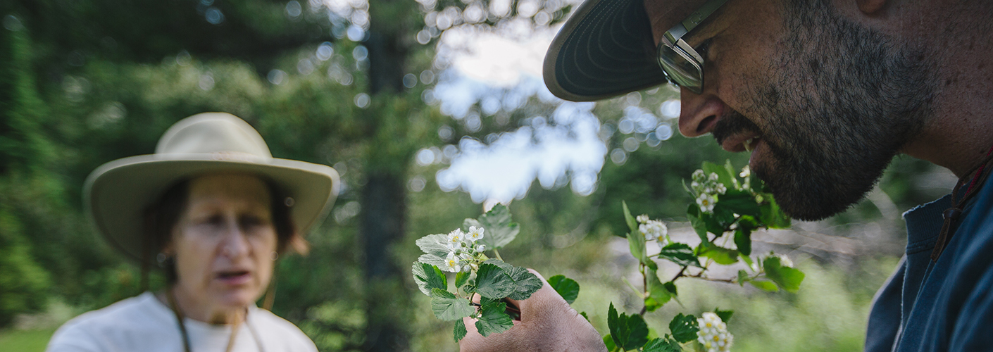 A man inspects a sprig of foliage in bloom while a woman in a sunhat looks on in the background.