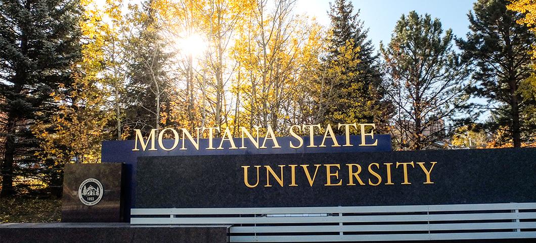 Explore the reasons why MSU is Montana's Premier University!
