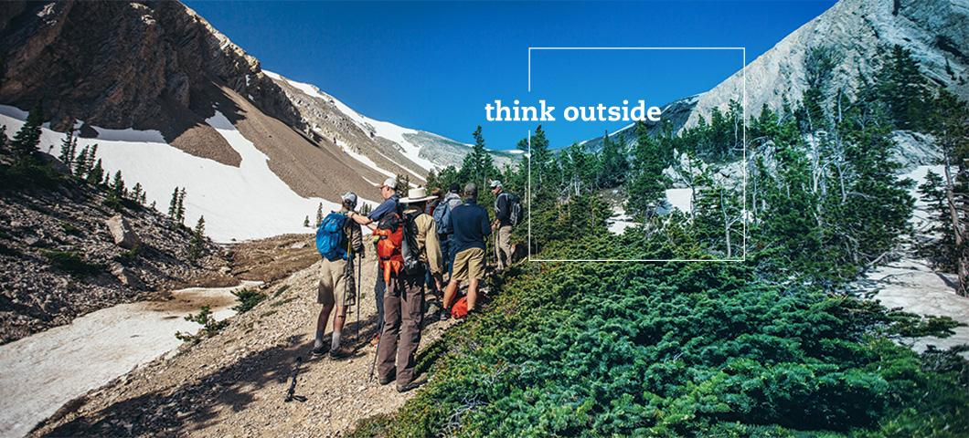 MSU - Think Outside