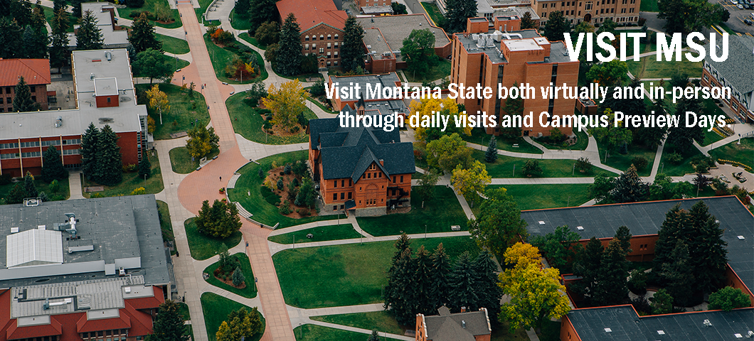 Visit Montana State both virtually and in-person!