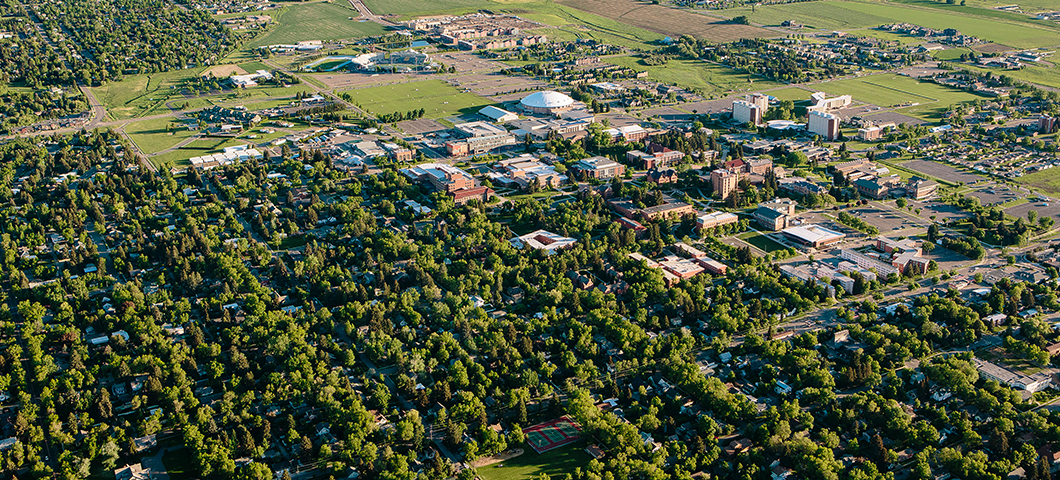 Aerial view of the Montana State University campus in summer.