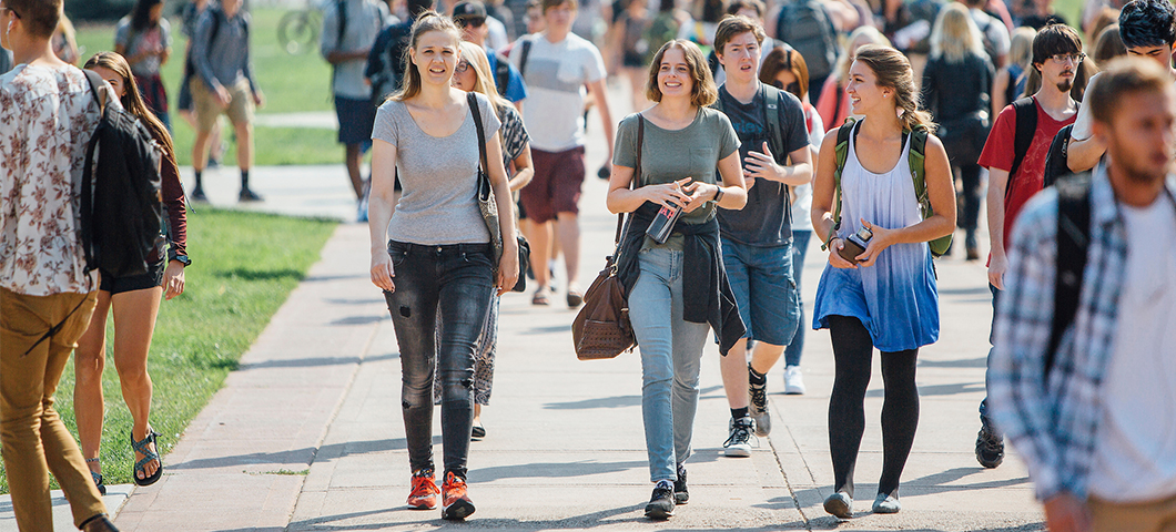 A group of students walk down the Centennial Mall in summer.