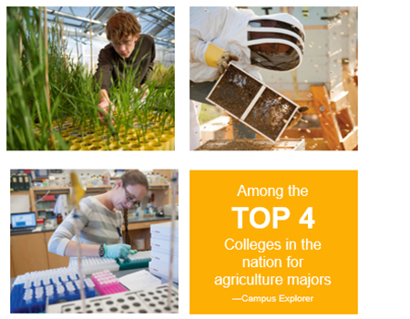 We are among the top 4 colleges in the nation for agriculture majors, accorind to Campus Explorer