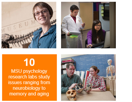 10 MSU psychology research labs study issues ranging brom neurobiology to memory and aging