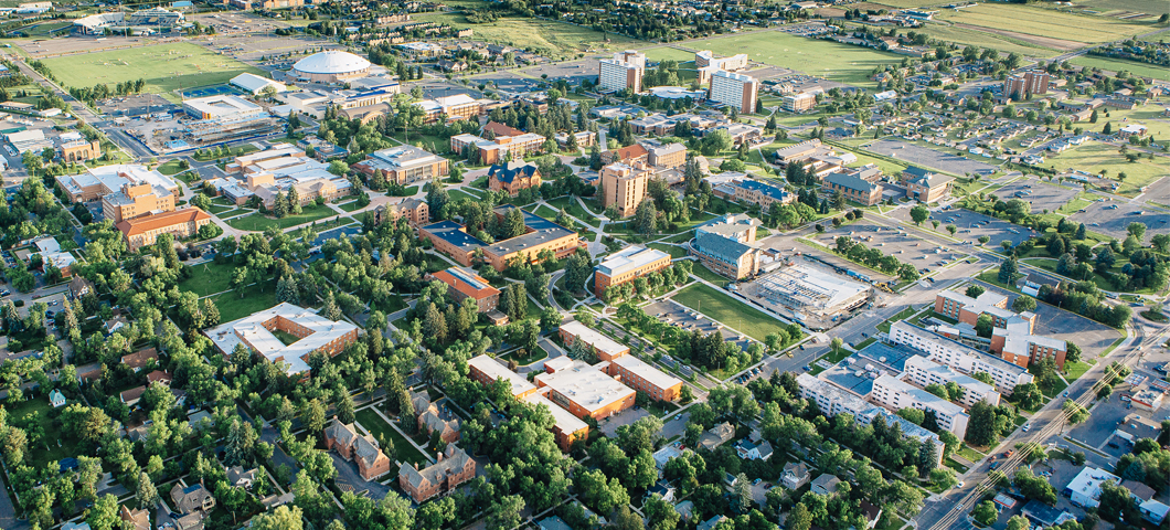 Aerial view of campus in summer.