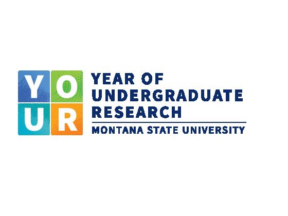 Year of Undergraduate Research |