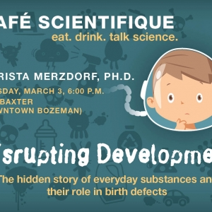 At the next Café Scientifique, MSU's Christa Merzdorf will discuss environmental factors affecting birth defects. Join us on Tuesday, March 3rd, at The Baxter​ in downtown Bozeman.