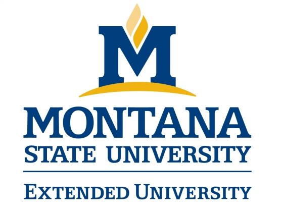 Extended University logo