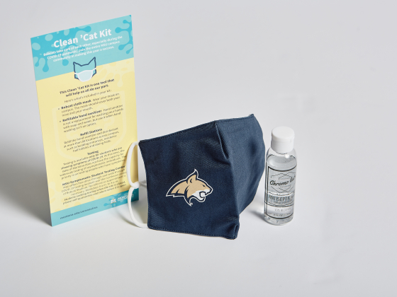 Clean 'Cat Kit card, mask, and hand sanitizer |