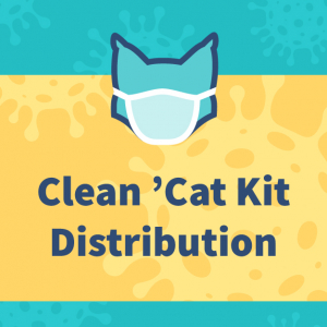 Clean 'Cat Kit