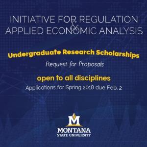 RFP Undergraduate Research