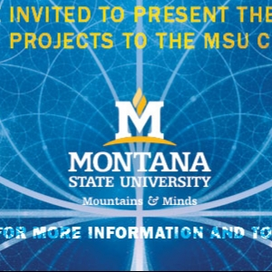 2017 MSU Student Research Celebration Banner
