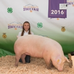 Local 4-H participant Emily Ireland is pictured with her pig Montana State University purchased at the recent Gallatin County Fair. Submitted photo.