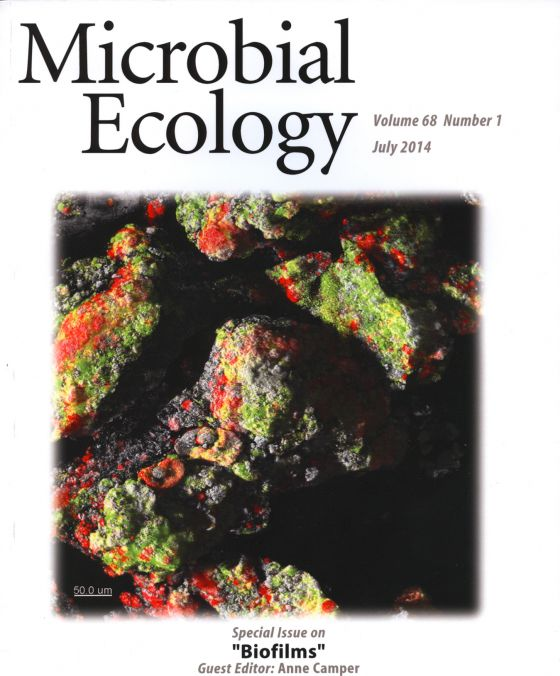 MSU biofilm experts featured in microbiology journal
