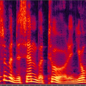 Spectrogram representation of an audio signal