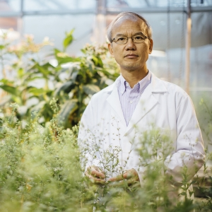 Chaofu Lu Receives Grant from Department of Energy