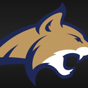 Montana State Bobcat