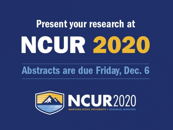 NCUR 2020 Abstracts |