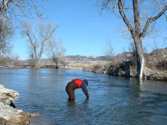 A volunteer takes a water sample on the Crow Indian Reservation. MSU photo.  