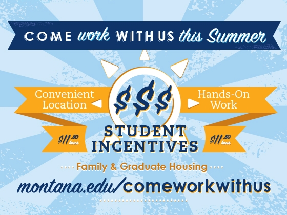 Come work with us this summer |