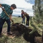 Yellowstone Hall Tree Planting