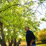 MSU Extension horticulture specialist Toby Day inspects an apple orchard at Chief Plenty Coups State Park near Pryor. One of the most well-known heritage orchards in the state, the orchard still produces apples that are baked into pies fetching top dollar