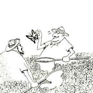 Scientists chasing butterflies (Far Side Cartoon by Gary Larson)