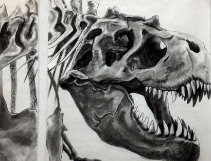 Drawing of T-Rex