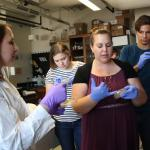 Students look at lab samples in Voyich-Kane's lab