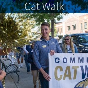 Cat Walk 2017