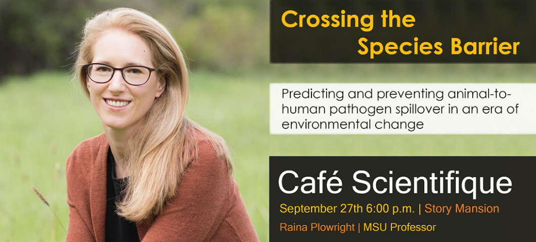 Raina Plowright Cafe Scientifique