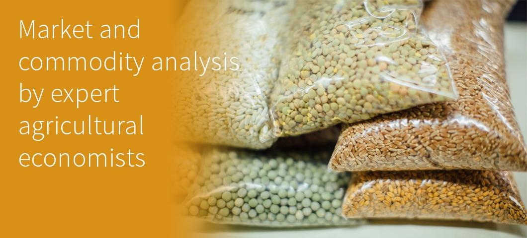 Pulse crops