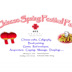 Chinese Spring Festival Fair