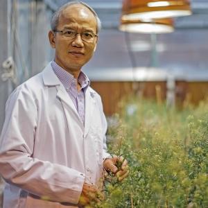 Dr. Chaofu Lu