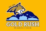 Gold Rush T-shirt design |