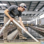 Civil Engineering Students Build Wetland for National Fish Hatchery