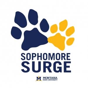 Sophomore Surge Graphic