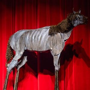 Bleu Horse by Jim Dolan