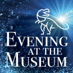 Evening at the Museum