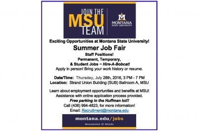 MSU Summer Job Fair