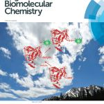 The Oct. 28 cover of Organic and Biomolecular Chemistry incorporated mountains, a big sky and a schematic of a SNO-protein labeling technique to illustrate research done by MSU scientists and their collaborators.